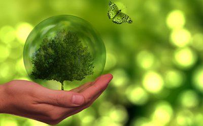 Duurzaamheidsweken Veenendaal 2021